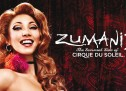 Get a Zumanity Wedding Starting January 2016!